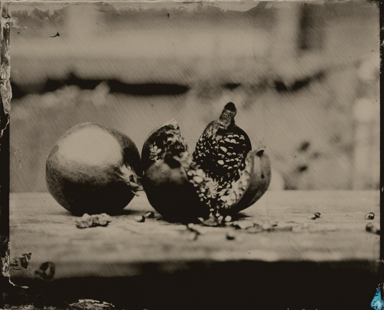 http://rikardosterlund.com/files/gimgs/th-20_Wetplate-scan-21060418-Pomegranate.jpg